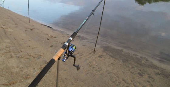 Активная рыбалка на фидер
