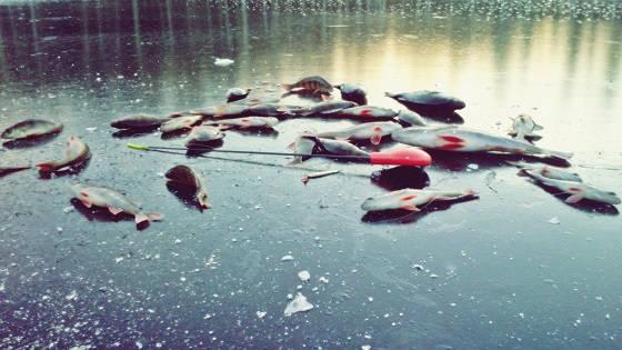 Рыбалка на мормышку по первому прозрачному льду