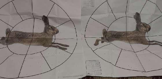 Охота на зайца: Проверка на резкость дроби