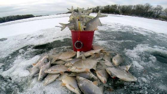 Зимняя рыбалка в оттепель