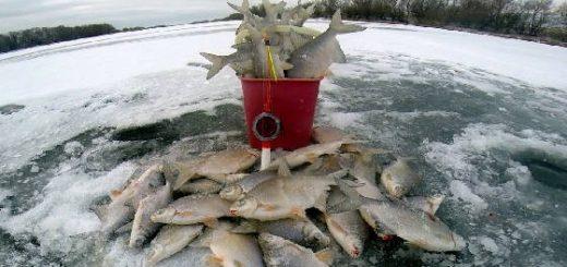 Рыбалка зимой на белую рыбу