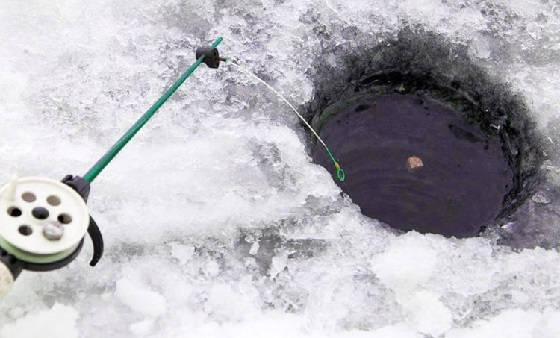 Ловля чехони зимой в Астраханской области