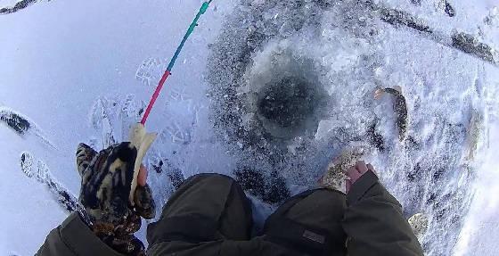 Ловля окуня зимой на р. Ахтуба