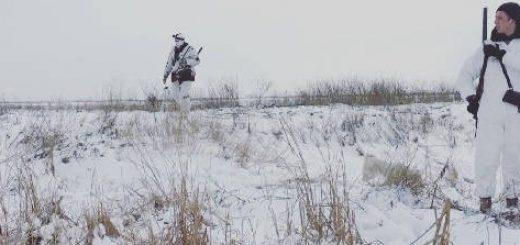 Загонная охота на Лису