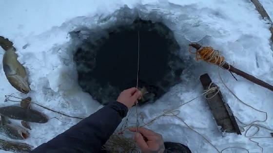 Рыбалка на Севере: Туруханский район
