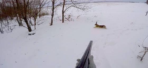 Охота на зайца при наледи и сильном ветре