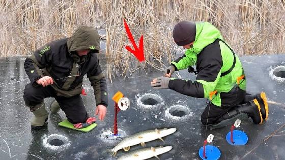 Новогодняя рыбалка: карп и щука