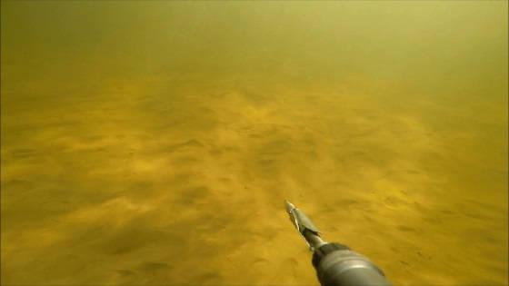 Подводная Охота в Волгограде