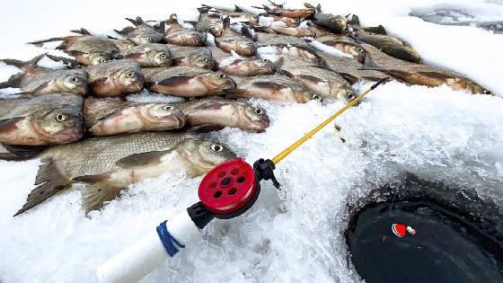 Рыбалка в ЛЮТЫЙ СИБИРСКИЙ МОРОЗ