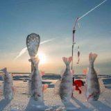 Рыбалка в тундре зимой