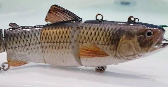 Рыбалка на РОБОТОВ-РЫБОК зимой