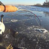 Рыбалка на вибы на Волге со льда