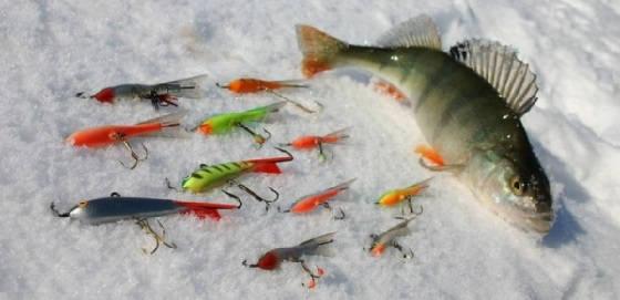 зимняя рыбалка для начинающих