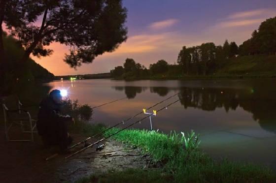 Ночная рыбалка на сома