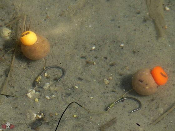 Ловля карпа на мини бойлы ЗИМОЙ: подводная съёмка