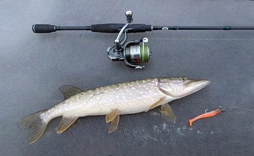 Рыбалка в феврале на джиг
