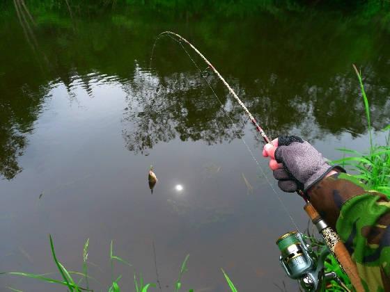 Рыбалка в Республике Коми на спиннинг