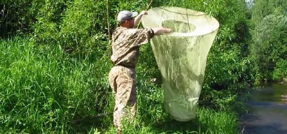 Как сделать ловушку для рыбы законной
