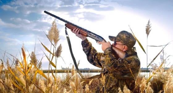 методика стрельбы из ружья на охоте