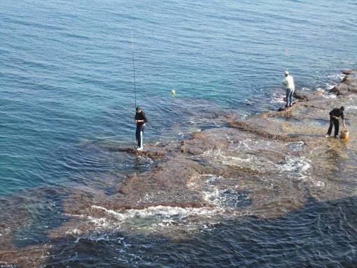 Какую рыбу и когда ловить на Черном море?
