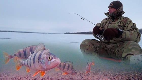 ловля окуня со льда на силиконовую приманку Fishup Tanta
