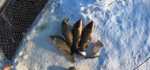 Рыбалка на паук в ледяной проруби