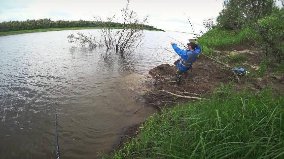 Рыбалка на спиннинг на севере: Протока реки Печора