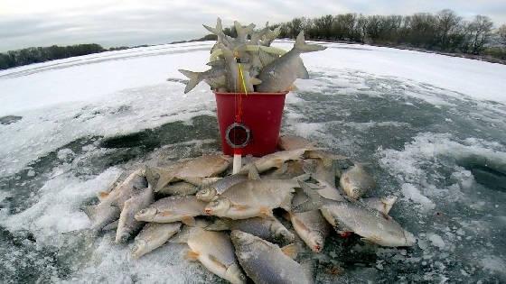 Снасть для зимней рыбалки в глухозимье