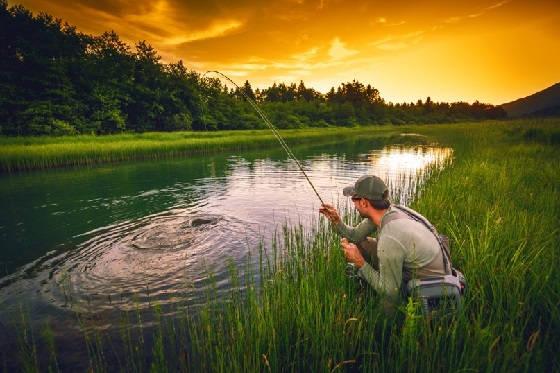 Рыболовные термины: Ярап - юха