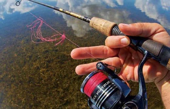 Рыболовные термины от Я до Яранги