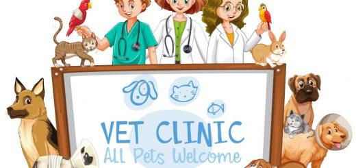 vet clinic near me