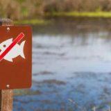 Рыболовный запрет