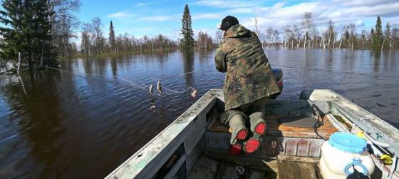 Рыбалка на сети в Республике Коми в затопленном лесу