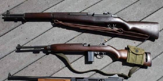 Чем винтовка отличается от карабина