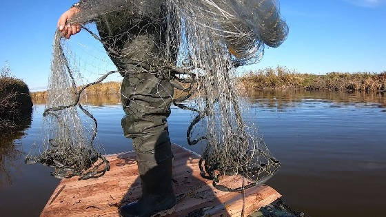 Кастинговая рыбалка осенью на сазана