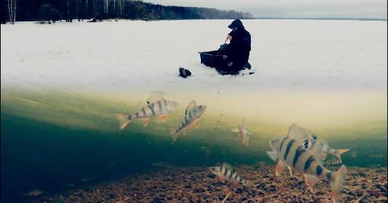 Зимняя рыбалка на балансир и мормышку