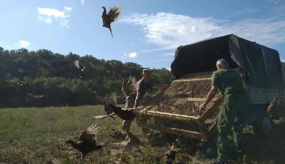 Крым: Севостопольское охотхозяйство