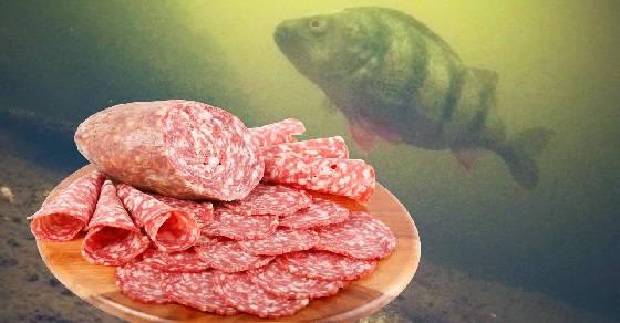 Реакция Рыбы на КОЛБАСУ