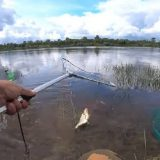 Рыбалка на подъеме воды