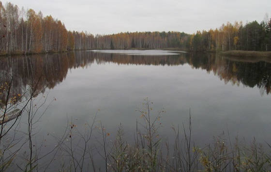 Рыбалка на торфяном озере