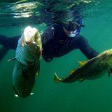 Подводная Охота в конце февраля