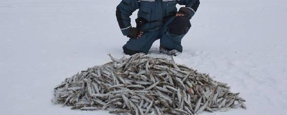 зимняя рыбалка в Де-Кастри