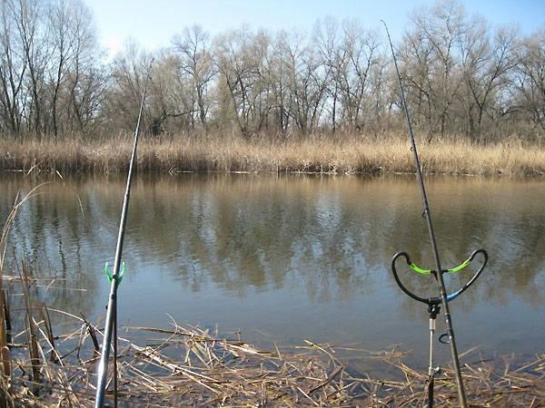 Весенний фидер на реке Тетерев