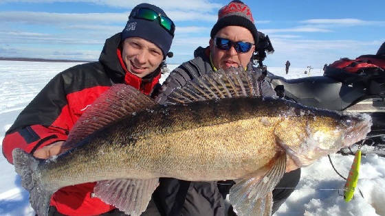 Весенняя рыбалка на вибы