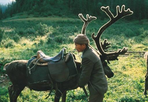 Амагын - вьючное седло на оленя