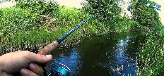 Рыбалка в лесном ручье