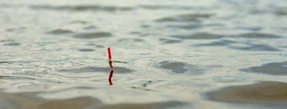 Как искать и поймать рыбу на новом водоёме?