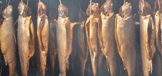 Холодное КОПЧЕНИЕ рыбы в домашних условиях