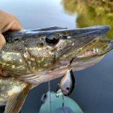 Самодельный плавающий кренк для рыбалки на щуку летом