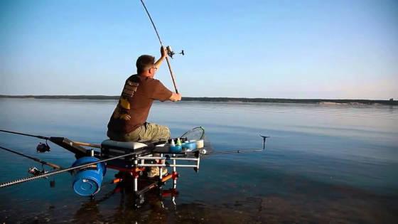 Рыбалка на реке Свияга на фидер и поплавок